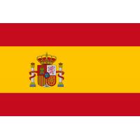 Monete euro emesse dalla Spagna.